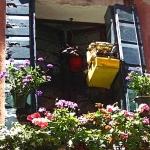 Birdcage In Window, Venice, 2003